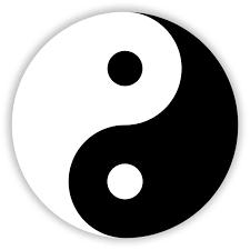İnsan Etkinliklerinde Akupunktur Konuşuldu